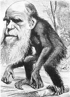 cartoon of Darwin as ape